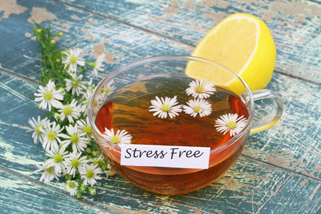 Stress free card with cup of chamomile tea on rustic wooden surface