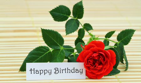wild rose: Happy Birthday card with red wild rose on bamboo mat