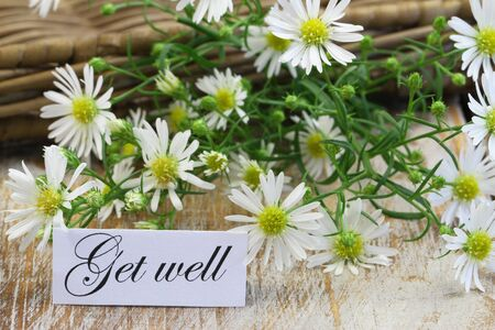 get well: Get well card with fresh chamomile flowers on rustic wooden surface