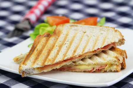 side salad: Toasted sandwich with ham an cheese and side salad on white plate