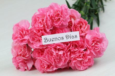 Guten Morgen Karte Mit Rosa Nelken Blumenstrauß Lizenzfreie