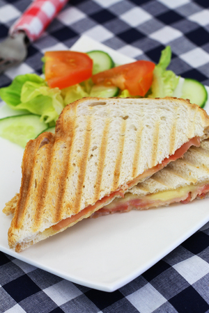 Toasted sandwich with ham an cheese and side salad on white plate