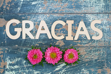 Gracias (thank you in Spanish) written with wooden letters on rustic wooden surface and pink daisies