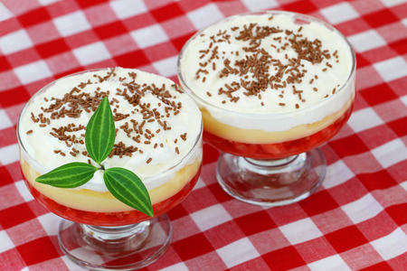 trifle: Two English trifles on red and white checkered cloth