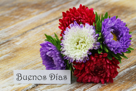 Buenos Dias, Good morning in Spanish, with colorful aster flower bouquet