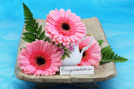 Congratulations card with pink gerbera flowers on blue background