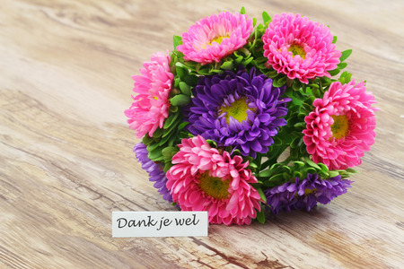 Thank you (which means thank you in Dutch) with colorful daisy bouquet Stockfoto