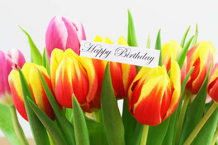 Happy Birthday card with background of colorful tulips