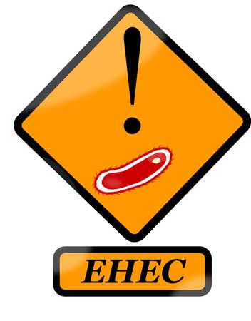 Escherichia coli - EHEC Vector