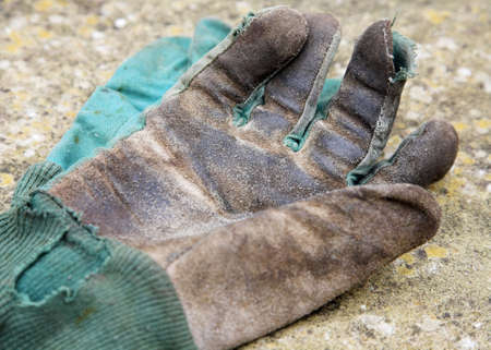 Old Leather Gardening Gloves photo