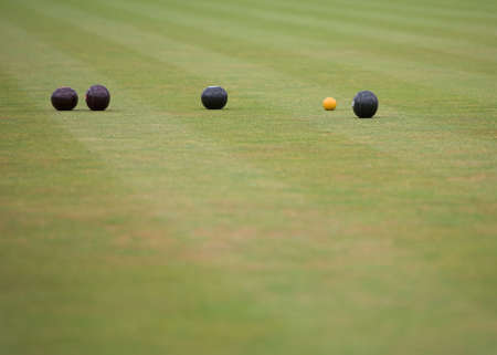 A game of lawn bowls showing woods and the jack.