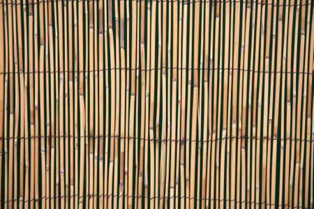 fence panel: A fence panel made from bamboo canes