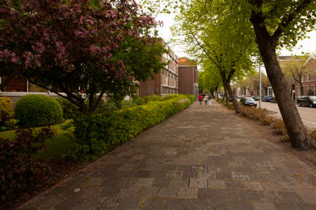 a view of a residential neighborhood in the scenic Dutch city of the Hague. Cobblestone sidewalks and street as well as blooming trees, well trimmed bushes and flowers are seen. Standard-Bild