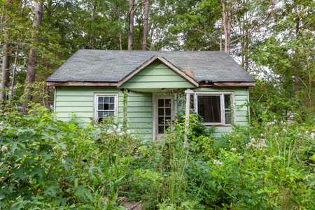 An abandoned very old house in the middle of woods . The one story building is poorly maintained with wooden frame rotting. There is an outgrow of wild bushes and plants all over the place
