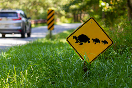 A road sign at a wildlife refuge that warns the drivers of wild animals crossing the road. It aims to prevent animals getting hit by cars. Sign shows a mother turtle and baby turtles crossing the road