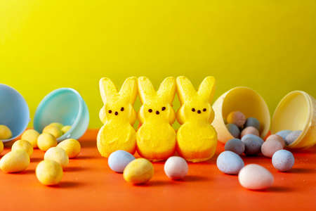 Easter holiday celebration concept with three little marshmallow bunnies and multiple small colorful crisp sugar coated chocolate easter eggs on orange surface with blue background. Versatile image.
