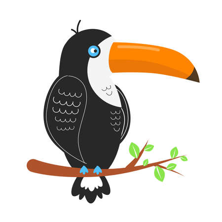 Toucan bird illustration. Toucan sits on a branch with leaves Vector Illustration