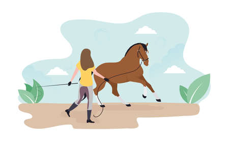 Work with a horse on the cord. Lounging. Girl trains a horse.