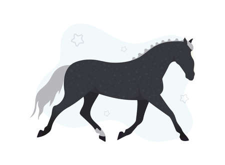 Horse illustration. Illustration of a black horse on a background of stars. Image of a black horse with stars on the background