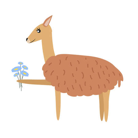 Illustration of animal guanaco. Guanaco character.