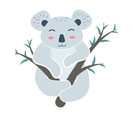Animal koala on the branches. Koala bear character on eucalyptus branches. Vector illustration.