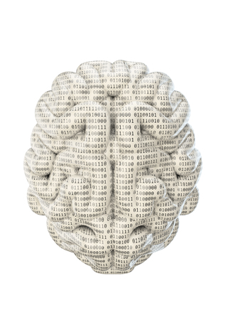 zeroes: Binary brain  3D render of brain covered in binary code zeroes and ones Stock Photo