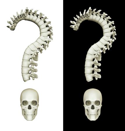 삶 또는 죽음의 문제 척추와 두개골, 화이트와 블랙에 격리하는 물음표의 3D 렌더링 스톡 콘텐츠