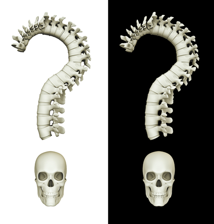 Question of life or death  3D render of question mark made of spinal column and skull, isolated on white and black
