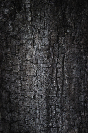 Burnt grunge background  Composite photo of burnt wood and concrete textures