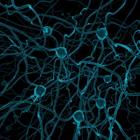 nerveux: fond de la cellule nerveuse rendu 3D des cellules nerveuses Banque d'images
