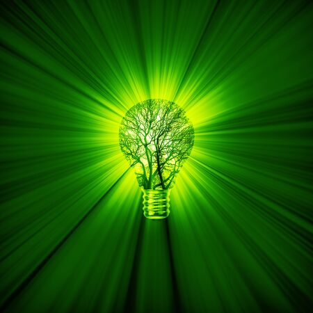 green power: Green power bulb  3D illustration of green energy concept with tree light bulb emitting rays of light