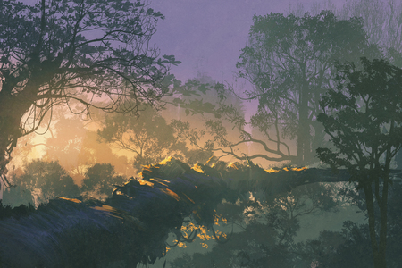 treetop: tree bridge in rain forest,sunrise in woods,illustration painting
