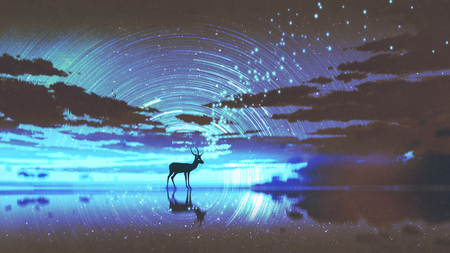 silhouette of the deer walking on water against night sky with blue light, digital art style, illustration painting Stock Photo
