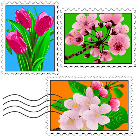 perforated: postage stamps with pictures of flowers vector illustration