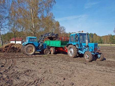 manure: Loading manure spreader by tractor front loader