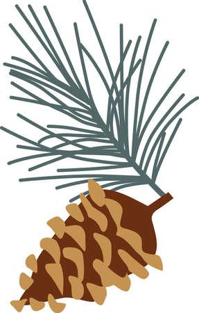 松の小枝は、休日や冬の装飾に最適です。 またキャンプ用具を試してみてください。