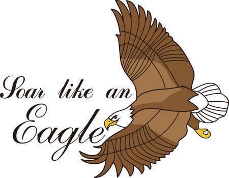This majestic eagle is an impressive site as it soars through the sky.  Majestic wildlife is always an impressive addition to apparel and dcor.