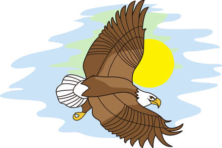 This majestic eagle makes an impressive scene as it soars through the sky.  Majestic wildlife is always an impressive addition to apparel and dcor.