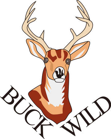 seeks: A splendid wildlife trophy buck is what every hunter seeks.  If you cant hunt one, why not decorate apparel with this perfect buck!