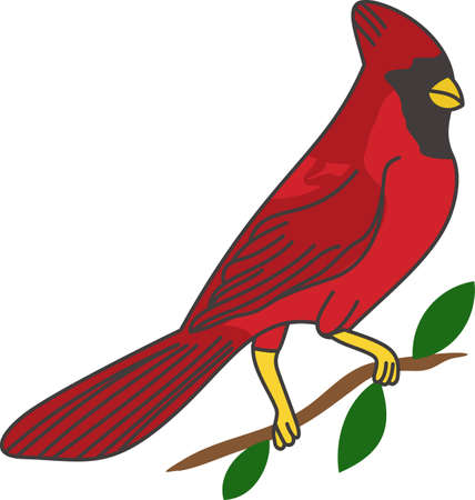 birdwatcher: We love birds and this lovely cardinal is a favorite.  This brightly colored bird adds natures charm to decorative pieces for any home.
