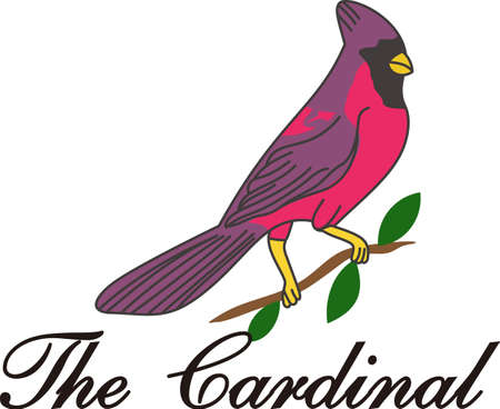 redbird: We love birds and this lovely cardinal is a favorite.  This brightly colored bird adds natures charm to decorative pieces for any home.