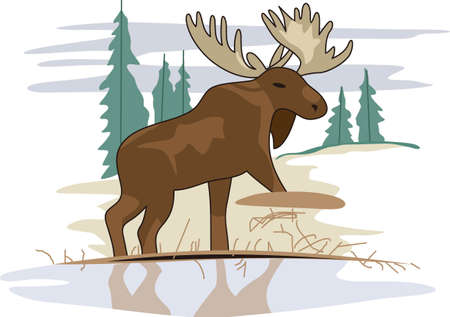 A beautiful moose rules the winter lakeside community.  He is so lovely as a decoration for fleece jackets and shirts.