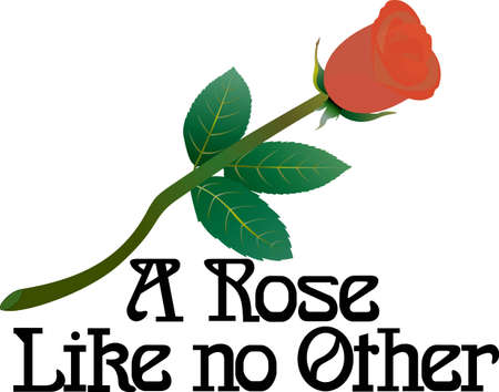 script writing: A single rose says so much.  Add some love or just a bit of pretty to your projects with this long stemmed beauty.