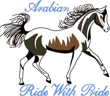 Horses are a thing of beauty and Arabians are a thing of exceptional beauty.  We love this lovely equine on riding jackets or a saddle blanket.