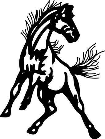 colt: Go Mustangs!  Wear team spirit with the Mustang proudly displayed on game day wear.