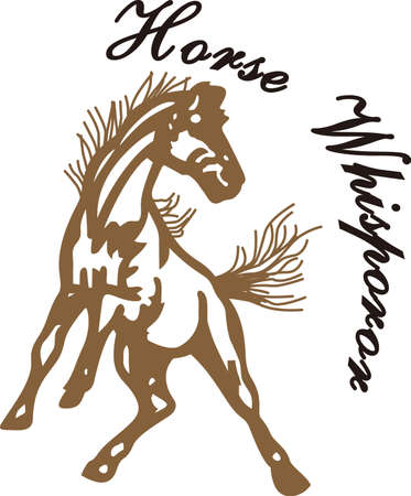 Go Mustangs!  Wear team spirit with the Mustang proudly displayed on game day wear.