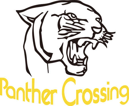 panthers: Lets Go Panthers!  Wear team spirit with the Panther proudly displayed on game day wear.