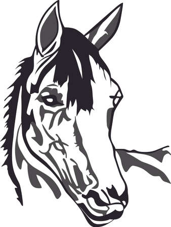 allow: Horse people are special people.  Our horse designs allow you to create a very special creation for a perfect barn friend gift. Illustration