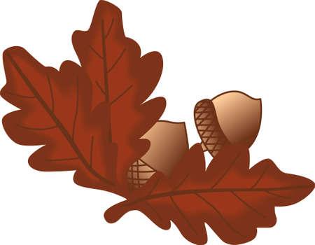 이 오크 나뭇잎의 가을은 수확 시간, 모닥불, 밀밭, 건초 더미, 좋은 음식 및 가족을 연상시킵니다. 가을 프로젝트에 대한 훌륭한 디자인!