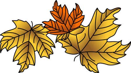 계절이 바뀝니다. 가정 프로젝트에서이 디자인으로 가을의 화려 함을 경험하십시오!